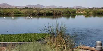 tres-rios-wetlands-image
