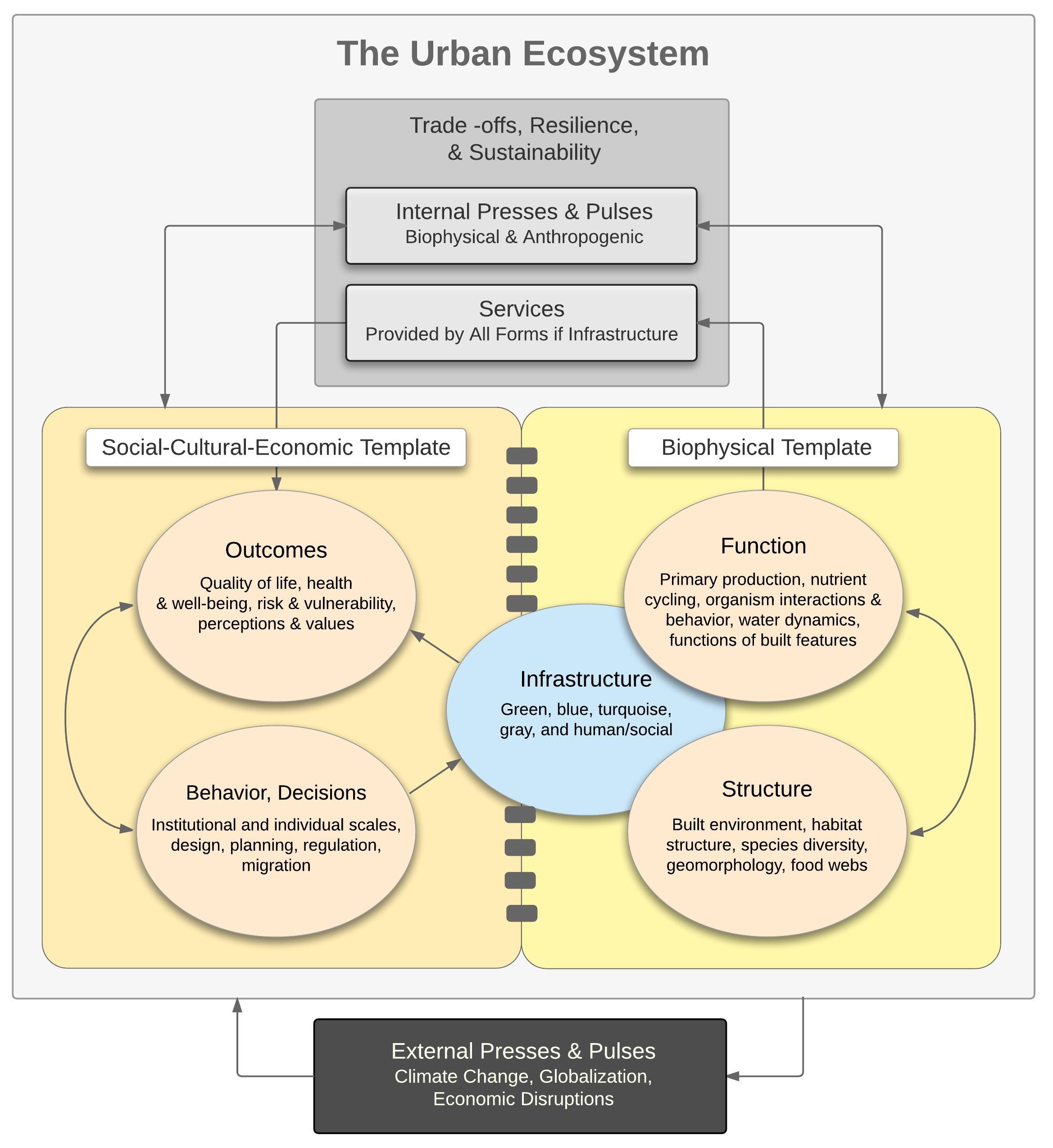research diagram