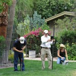 Research in residential landscapes is a key components of CAP's urban ecology research program