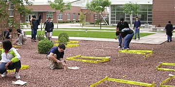 Ecology Explorers Scientific Activities