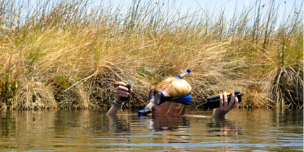 Person with snorkel mask swimming in a pond with research intstruments taking samples
