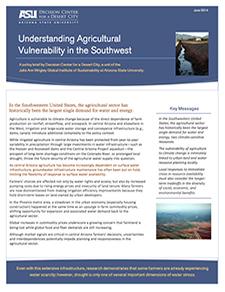 DCDC Policy Brief June 2014