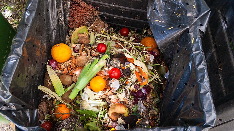 zero food waste challenge