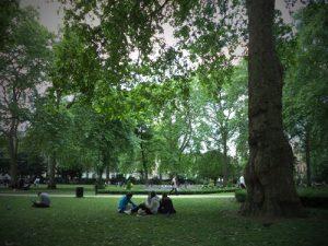 london-picnic-cropped
