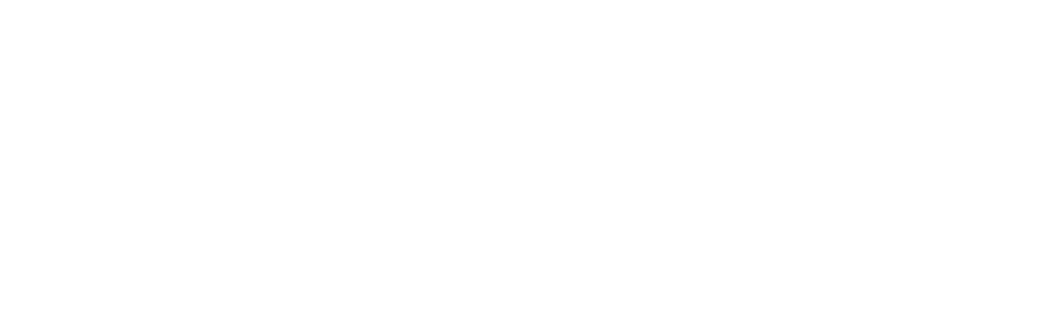 Sustainable Cities Network Logo