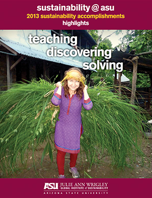 Sustainability Highlights 2013 pdf
